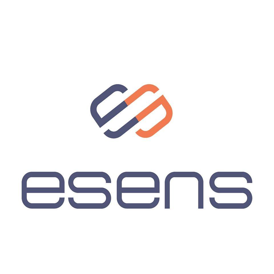 logo de Esens-Consulting